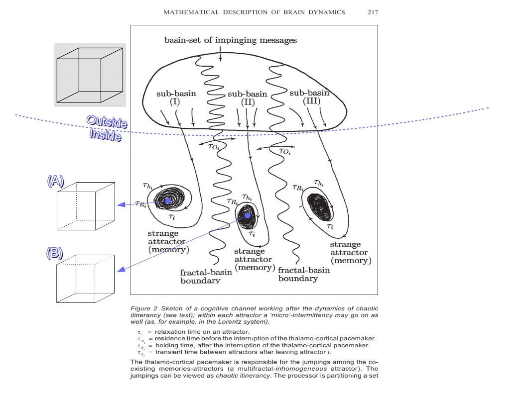 "Figure 2. Chaos and Biological Information Processing. Adapted from [Nicolis J.S. & Tsuda, 1999]. ""Outside"" sends stimuli that can have more than one representations ""Inside"". Categorization is possible due to coexisting attractors driven by a pacemaker in a ""time-division-multiplexing-basis"". The whole process can be modelled as one of driven chaotic itinerancy. It can be implemented by very simple hardware giving rise to extremely complex software."